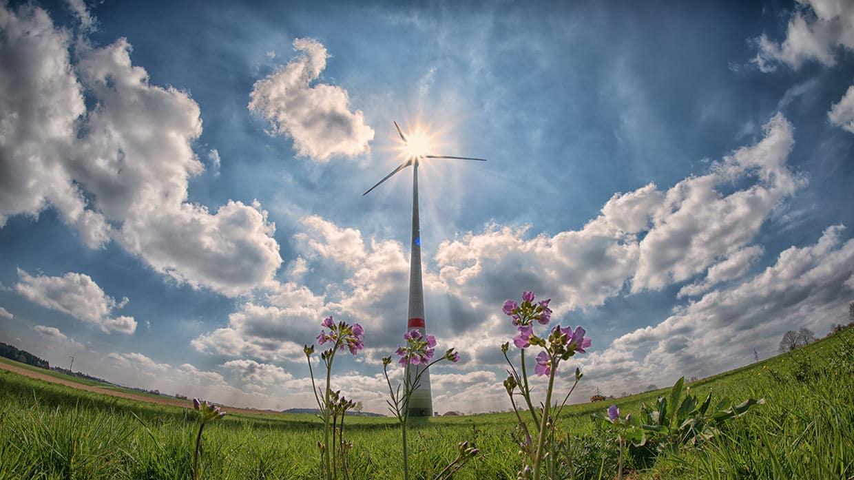 Οι ευρωβουλευτές θέτουν φιλόδοξους στόχους για καθαρότερη, αποδοτικότερη χρήση της ενέργειας